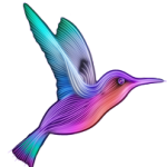 colibri-et-cie